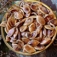 800 Yıl Önce Saklanmış Tohumlardan Elde Edilmiş Meyve