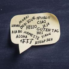Yeni Başlayanlar İçin: Doğrusu ve Yanlışlarıyla, Kapsamlı Bir Dilbilim Kılavuzu