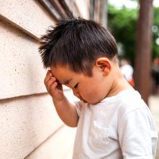 Çin'de Her Ailenin Tek Çocuğu Olması Politikasına Aykırı Olarak Doğan Kişiler: Heihaizi