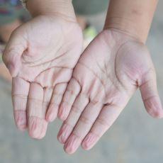 Uzun Süre Suda Kalınca Neden Sadece Parmaklarımız Buruşur?
