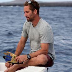 'Hızlı ve Öfkeli' Serisinin Kaybettiğimiz Oyuncusu Paul Walker'ın Pek Bilinmeyen Köpekbalığı Çalışmaları