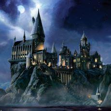 Hogwarts'taki Dört Binanın Britanya Adalarının Farklı Ülkelerini Temsil Etmesi