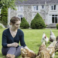 Ne Kedi, Ne Köpek! İdeal Ev Hayvanının Neden Tavuk Olduğuna Dair Eğlenceli Bir Yazı