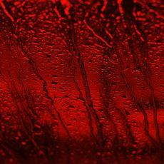 2001'de Hindistan'ın Kerala Bölgesinde Gerçekleşen Paranormal Kırmızı Yağmur Olayı