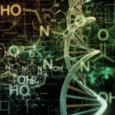 Evrimin İşleyişini Kullanarak En İyiyi Bulmayı Amaçlayan Yöntem: Genetik Algoritma