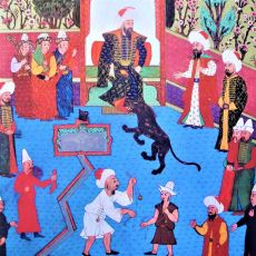 Osmanlı Döneminde İstanbul Ahalisinin İlk Kez Gördüğü Hayvanlar