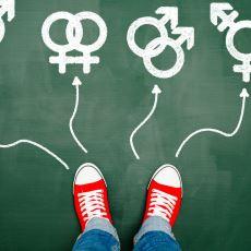 Eşcinsellik Bir Hastalık mıdır Yoksa Doğal mıdır?