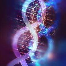 Genetik Müdahale ile Dahi Çocuklar Yaratmak Mümkün mü?