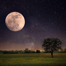Dünyamızın Uydusu Ay Hakkında Tatlı Tatlı Şaşırtma Gücüne Sahip İlginç Bilgiler