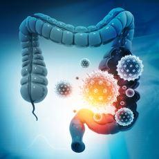 Vücudunuzda Sizinle Birlikte Hayatını Sürdüren Dev Canlı Nüfusu: Mikrobiyota