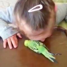 """""""Kuşu Sen Öldürdün"""" Diyerek Kızını Ağlatan Anne Üzerinden Psikolojik Bir Analiz"""