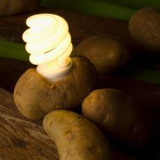 Faturaların Can Sıktığı Bugünlerde İlaç Gibi Araştırma: Bir Patates 40 Gün Bir Odayı Aydınlatabilir mi?