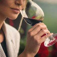Şarap Konusunda Acemi Olan Gurme Adayları İçin Giriş Seviyesi Bilgiler