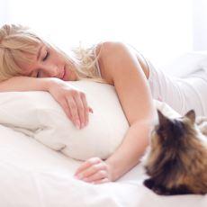 Sabahın Köründe Kedisi Tarafından Uyandırılanların Anlayabileceği Şeyler