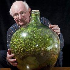 Bir Damla Su Verilmemesine Rağmen Neredeyse 50 Yıldır Yaşayan Bitki