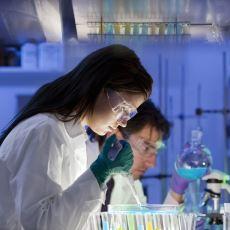 Bölüm Tercihinde Moleküler Biyoloji ile Tıp Arasında Kalanlar İçin Aydınlatıcı Bir Kıyaslama