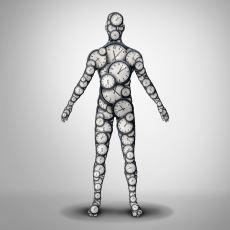 Biyolojik Saatin Çağımızda Kesinliğini Yitirmiş Bir Kavram Olması