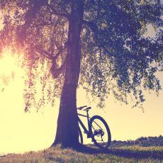Hayatı Adeta Tek Bir Seferde Anlatabilen Özet Cümleler
