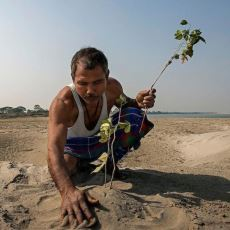 Çorak Araziye Tam 37 Yıl Boyunca Ağaç Dikerek Dev Bir Orman Yaratan Güzel İnsan: Jadav Payeng