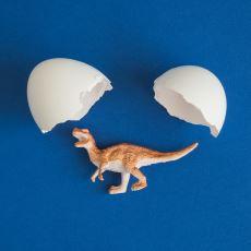 Bazı Dinozorların, Yumurtalarını Sanılanın Aksine Kuşlar Gibi Kümelenerek Korumuş Olması