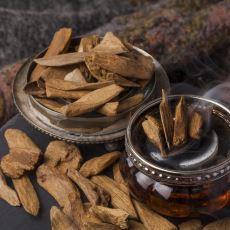 Parfüm Yapımında Kullanılan ve Kilosu Binlerce Dolara Alıcı Bulan Ağaç: Öd Ağacı