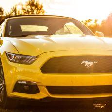 Ford Mustang'in Logosu Neden Diğer Modellerden Farklı Olarak At?