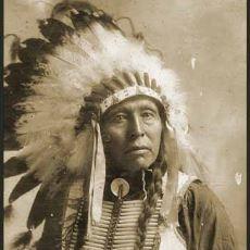 1800'lerde Kızılderili Reis'i Tarafından ABD Başkanı'na Yazılmış Efsane Mektup