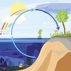 Su Niyetine Bir Zamanlar Hititler'e Ait Olan İdrarı mı İçiyoruz?