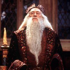 Dünyanın Gördüğü En Büyük ve En Mütevazı Büyücü Albus Dumbledore'dan Bilge Alıntılar