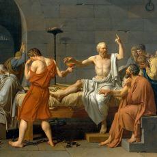 Sokrates'in İçerek Yaşamına Son Verdiği Zehir: Baldıran
