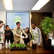 Amerika'da Esrar Endüstrisine Vasıflı Personel Yetiştiren İlginç Okul: Oaksterdam Üniversitesi