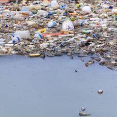 Dünya'nın Gelecekte Yüzleşeceği En Önemli Problemlerden Biri: Plastik Kirliliği