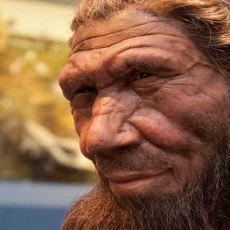 Tarih Öncesi İnsan Türlerinden Neandertal'lerin İsmi Nereden Geliyor?