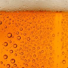 Yeni Başlayanlar İçin Evde Bira Yapımı
