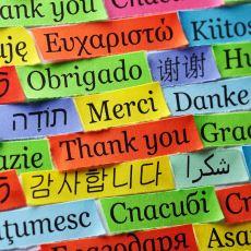 Birden Fazla Dili Mükemmel Düzeyde Bilmek Gerçek Anlamda Ne Kadar Mümkün?
