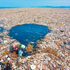 Yedinci Kıta Olarak Bilinen Plastik Birikim Noktası: Büyük Pasifik Çöp Alanı