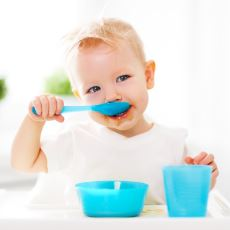1 Yaşından Küçük Bebeklere Neden Bal Yedirilmemeli?