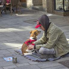 Almanya'da Evsiz Kalanların Alabileceği Sosyal Yardımlar