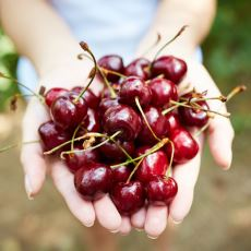 Sebzelerin Dahi Tüketilirken Acı Çektiğine İnananların Oluşturduğu İlginç Beslenme Tarzı: Frutaryenizm