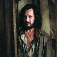 Harry Potter Evreninin En Bahtsız Karakteri Sirius Black'in Acı Dolu Hayat Hikayesi