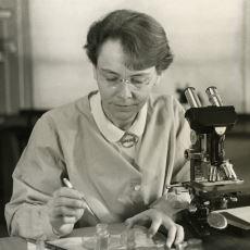 Bilim Tarihine Damga Vurmuş 10 Bilim Kadını