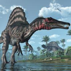 4.5 Milyar Yaşındaki Dünya'nın En Büyük Katillerden Biri: Spinosaurus