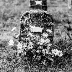 Öldükten Sonra Vücudumuzda Neler Olur?