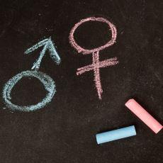 Türkçede İsimlerin Neden Cinsiyeti Yok?
