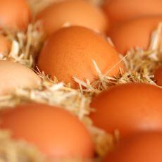 Bir Üreticinin Ağzından Köy Yumurtası Hakkında Bilmeniz Gerekenler