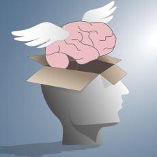 Beyin Göçü, Gerçekten de Bir Tür Vatan Hainliği midir?
