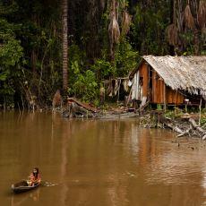 Küçük Bir Amazon Kabilesinde Uğruna Ayahuasca Seramonisi Yapılan Birinin Gözünden O Muhteşem Deneyim