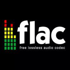 Müzik Dosyalarının Uzantısı Olarak Gördüğümüz FLAC Tam Olarak Nedir?
