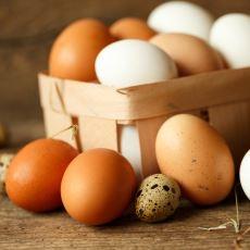 Gezen Tavukların Yumurtasının Aslında Sandığınız Gibi Sağlıklı Olmadığı Gerçeği