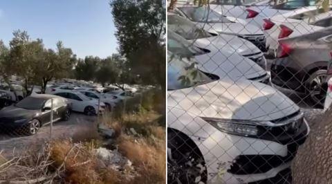Yüzlerce Honda Civic Neden Tarla Gibi Bir Yerin Ortasında Bekliyor?